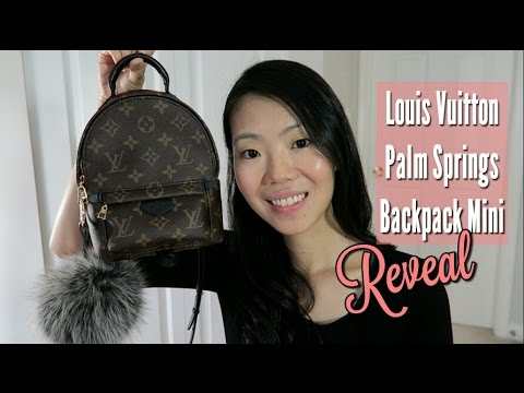 palm springs backpack mini review