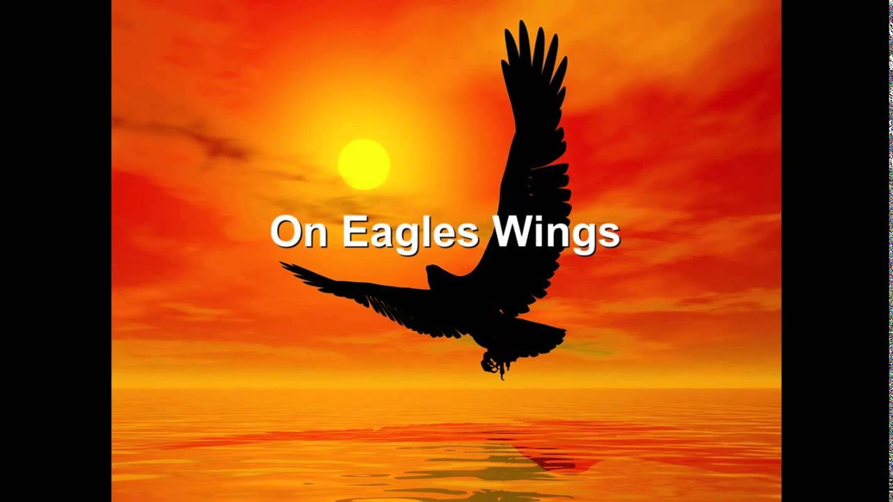 on wings of eagles review