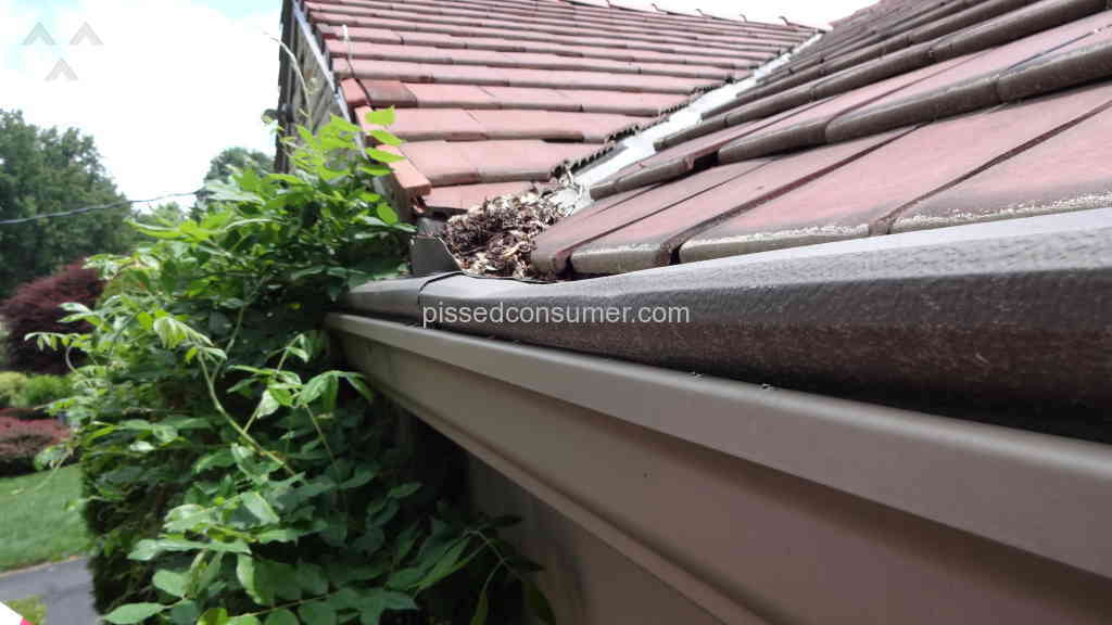 leaf guard reviews consumer reports