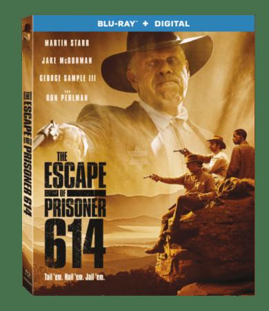 the escape of prisoner 614 review